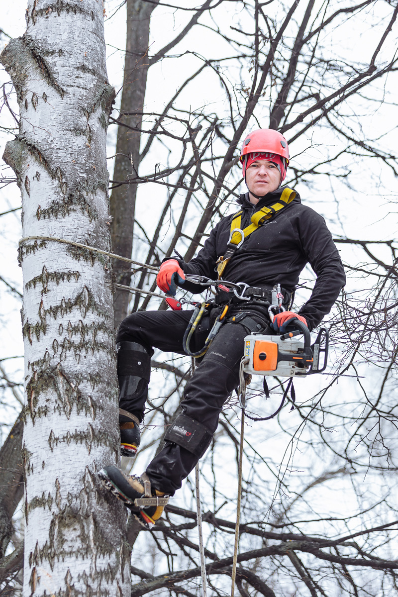 Альпинистское снаряжение разработано специально для работы с деревьями